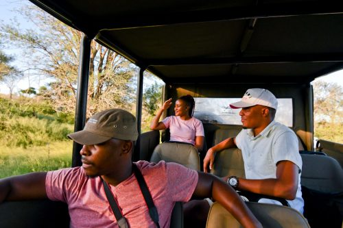 Go on a Game Drive